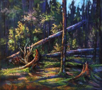 BoyerJoyce-ForestWonderland-10X12