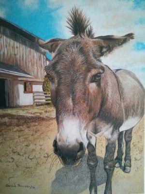 Hansen,Bernie-DonkeySanctuary-8X11