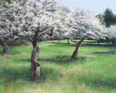 Mcdonnell,Donna-Orchard,HornbyIsland-16x20