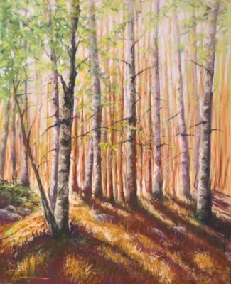 Nonomura.Denise-ForestLight-20x16
