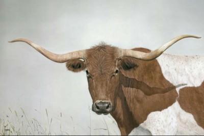 Laura Kroesbergen, Longhorn Steer, 24x36