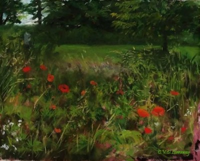 Cathy Lorraway, Summer Field of Poppies, 11x9