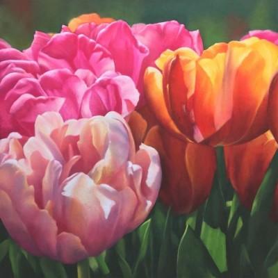 Kristen Vignal, MPAC, Tulip Riot, 18x18