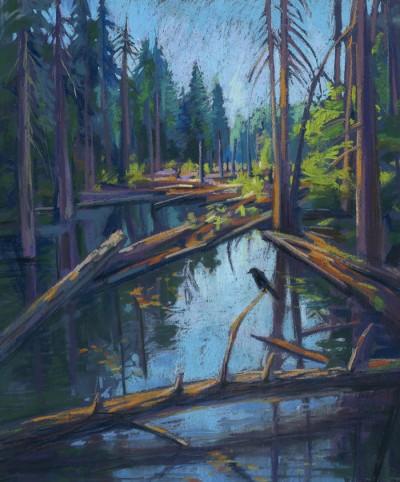Kira Sokolovskaia MPAC Swamp 20x24