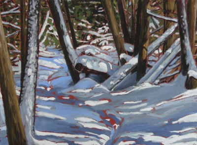 Leslie Miles Cedar Bush Path in Winter 15.5x11.5
